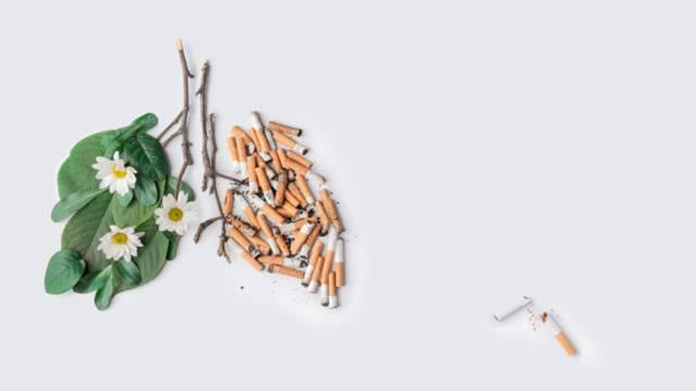 سیگار کشیدن؛ عامل بسیاری از بیماری ها | نخ دندان مینا